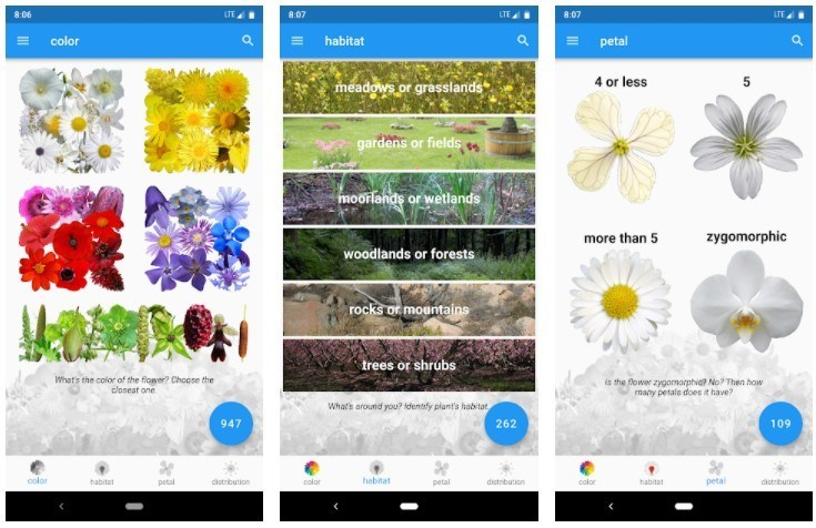 Best Gardening Apps: What's That Flower?