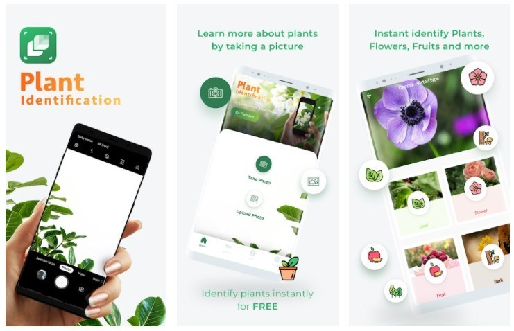 Best Gardening Apps: LeafSnap