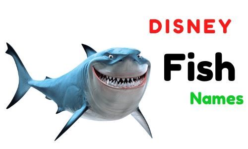 Disney Fish Names