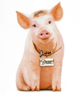 Famous Pig Names