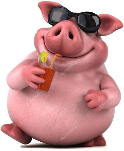 Funny Pig Names