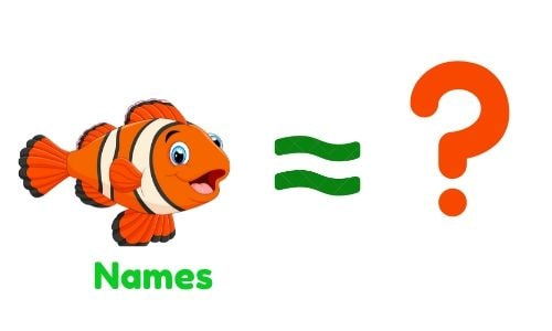 How To Choose Names For pet Fish