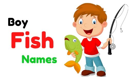 boy fish names