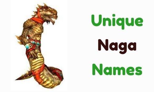 Unique Names Naga